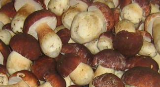 Как размораживать грибы