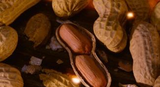 Как вырастить арахис дома