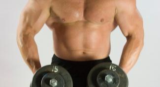 Как качать группы мышц