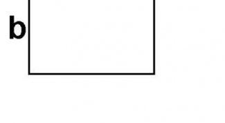 Как найти площадь прямоугольника, если известна одна сторона и периметр в 2018 году