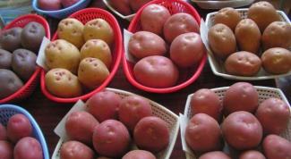 Как получать высокие урожаи картофеля