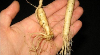 How to take ginseng
