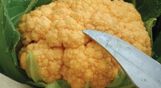 Как приготовить ребенку цветную капусту