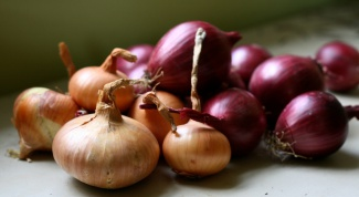 How to grow good onions