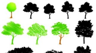 Как научиться рисовать деревья