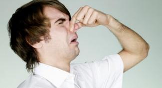 Как избавиться от запаха шерсти
