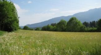 Как приватизировать землю в Украине