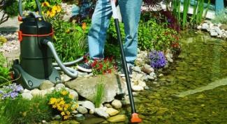 Как почистить пруд