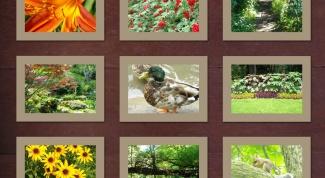 Как улучшить качество снимков