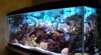 Как сделать аквариум самому