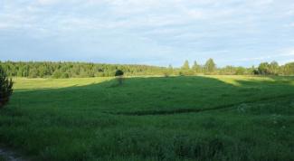 Как оформить право собственности на землю