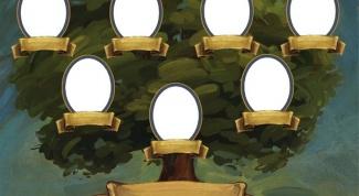 Как составить родовое древо