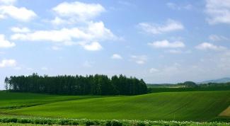 Как приобрести землю в собственность
