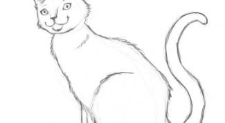 Как рисовать домашних животных