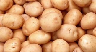 Как обрабатывать картофель