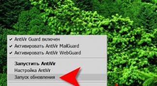 Как обновить антивирус Авира