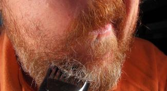 Как выбрать триммер для бороды