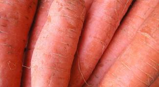 Как хранить морковь в зиму