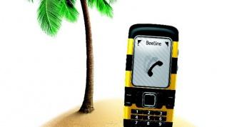 Как проверить баланс Beeline