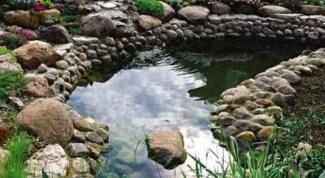 Как осушить болото