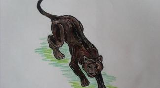 Как рисовать пантеру