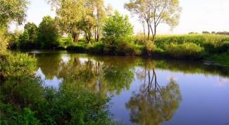 Как арендовать озеро