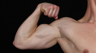How to get muscles on hands