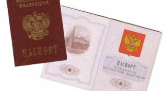 How to obtain a passport for the loss