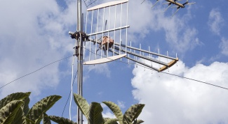 How to strengthen the radio signal