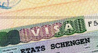 Как оформить шенгенскую визу на год