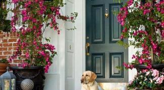 Как оформить вход в дом