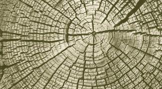 Как хранить дерево