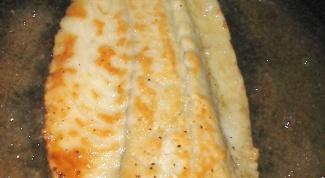 How to fry fish Hoek