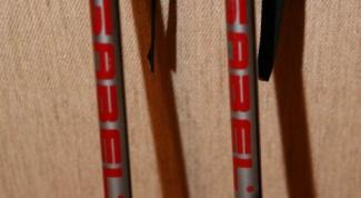 Как выбрать палки для горных лыж