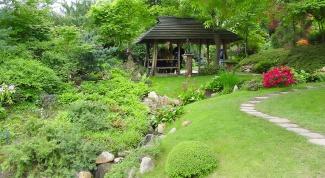 Как разместить сад
