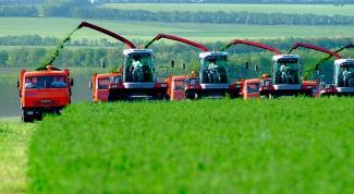 Как развить сельское хозяйство