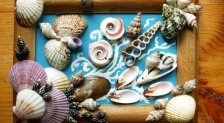 How to glue seashells