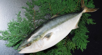 Как приготовить рыбу пикшу