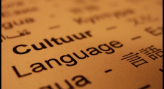 Как выучить английский за год