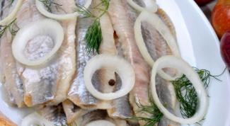 Как приготовить салат из сельди