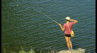Как ловить пелядь