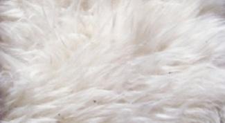 Как почистить белый искусственный мех