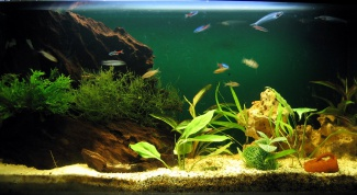 How to lower ph in an aquarium