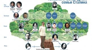 Как оформить родословное дерево