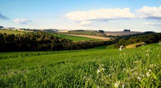 Как переоформить собственность на земельный участок