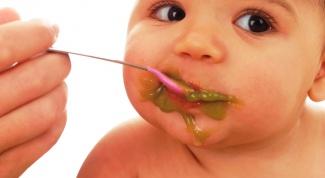 Как вводить овощной прикорм