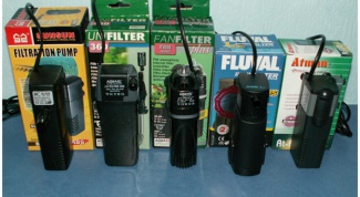 How to install an internal filter in the aquarium
