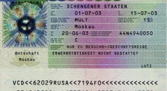 Как получить рабочую визу в Германию