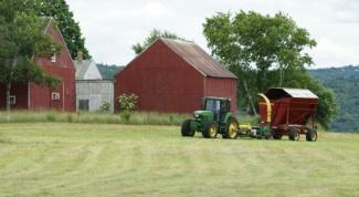 Как начать фермерское хозяйство