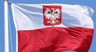 Как иммигрировать в Польшу